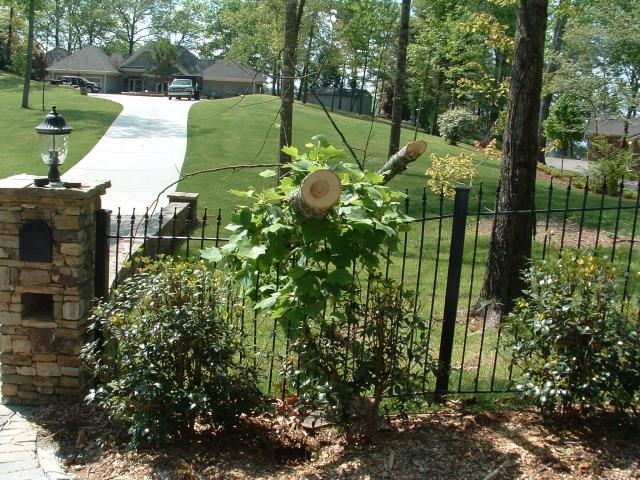 Wrought Iron Fence and Wrought Iron Fences in Suwanee, Johns Creek